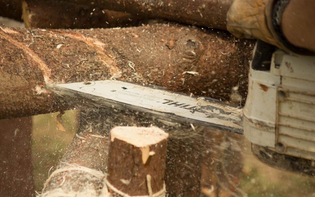 הכלים לעיצוב רהיטי עץ